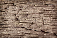 Wood pattern background Stock Images