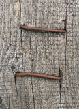Wood pattern texture background. With rusty nails Royalty Free Stock Photos