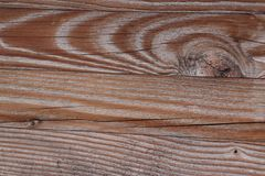 Wood Pattern Texture. Very special view stock photo