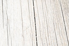 Wood Pattern Trunk Texture Stock Photo
