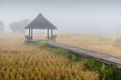 Wood Pavilions. Wood pavilion in the meadow,Thailand Stock Image