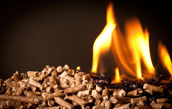 Wood pellet Stock Photography
