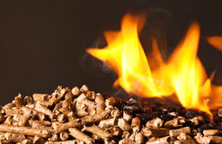 Wood pellet Royalty Free Stock Images