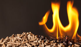 Wood pellet Stock Photos