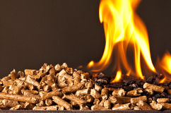 Wood pellet Royalty Free Stock Photography