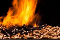 Wood pellet Stock Image