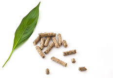 Wood pellet with leaf. A green leaf with wood pellet fuel Royalty Free Stock Photo