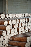 Wood pellets. A pile of ecological wood pellets Royalty Free Stock Image