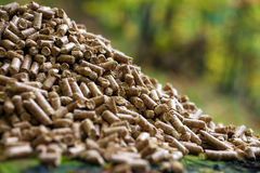 Wood pellets. Alternative fuel: Wood pellets, made from sawdust and other industrial wood waste Stock Images
