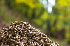 Wood pellets. Alternative fuel: Wood pellets, made from sawdust and other industrial wood waste Royalty Free Stock Image