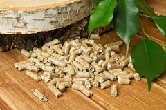 Wood pellets, birch and twig with leaves. Biomass Pellets- cheap energy. The concept of biofuel production stock image