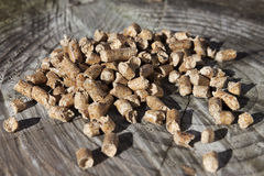 Wood pellets from conifer Stock Image