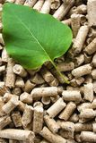 Wood Pellets & Green Leaf. A pile of wood pellets with a green leaf royalty free stock images