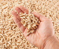 Wood pellets in hand Royalty Free Stock Photos