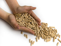 Wood pellets and hands Royalty Free Stock Photography