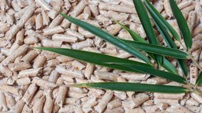 Wood pellets for heating and green leaves. On White background Stock Photography