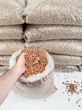 Wood pellets in mans hand Royalty Free Stock Photography