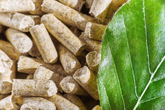Wood pellets Stock Image
