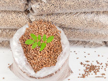 Wood pellets in a Sack with tree sapling Royalty Free Stock Image