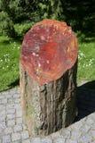 Wood Petrification Araucarioxylon Arizonicum Fotografering för Bildbyråer
