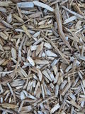 Wood pieces used for garden mulch. Small pieces of cut wood is used to cover the ground to stop growing unwanted grass and weeds. It is also used in garden to stock photo