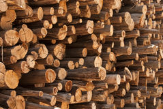 Wood Pile. Pile of sawn timber stacked and stored ready for winter use Royalty Free Stock Image
