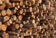 Wood Pile Royalty Free Stock Image