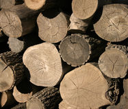 Free Wood Pile Stock Image - 53991