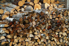 Wood Pile. Stacked firewood in wood pile in Bar Harbor Maine USA royalty free stock image