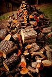 Wood pile. A pile of chopped wood Royalty Free Stock Images