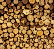 Wood Pile Royalty Free Stock Photo