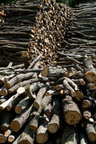 Wood pile background Stock Images