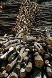 Wood pile background Stock Images