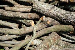 Wood pile background Stock Photos