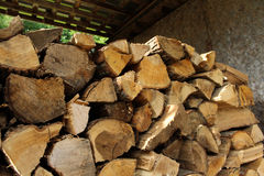 Wood Pile in a Garden Shed Stock Photos