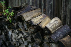 Wood pile with Green Leaf. Wood stacked with wood fence boards in background Stock Photos