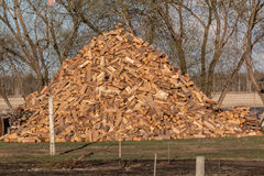 Wood pile. Huge cut wood pile for burning Stock Image