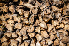 Wood in pile outdoor Royalty Free Stock Photos