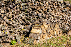 Wood in pile outdoor Royalty Free Stock Photography