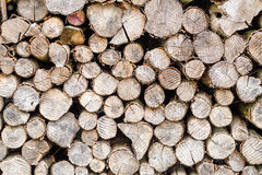 Wood in pile outdoor Stock Image