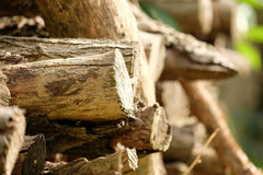 Wood pile. D in endless stacks on a Summer day Royalty Free Stock Photography