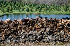 Wood pile preparing for the winter. Royalty Free Stock Photos