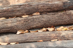 Wood pile. Raw of wood Royalty Free Stock Images