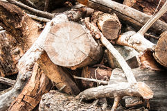 Wood Pile and smaller sticks. Chopped Wood. Fire Wood. Cutting down tree Stock Photos