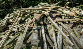 Wood PIle Royalty Free Stock Image