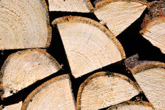Wood pile stacked for firewood. Pile of wodden logs stacked for firewood Stock Photos