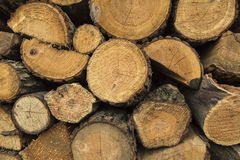 Wood pile stacked. And ready for winter, background texture Royalty Free Stock Photography