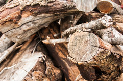 Wood Pile with stump. Chopped Wood. Fire Wood. Cutting down tree Stock Photography