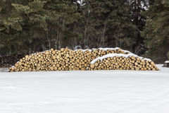Wood pile. In the winter snow Royalty Free Stock Photo