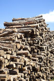 Wood piled Royalty Free Stock Photo